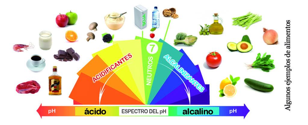 Alimentos dieta alcalina