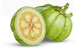 Fruto de Garcinia cambogia